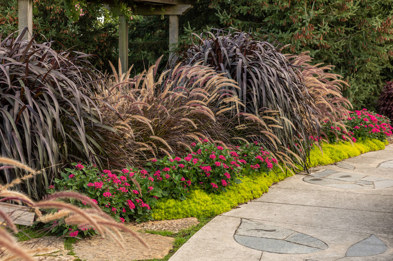 Include Hardscape Landscaping for a Retired Homeowner